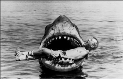 Shark-Syllabus